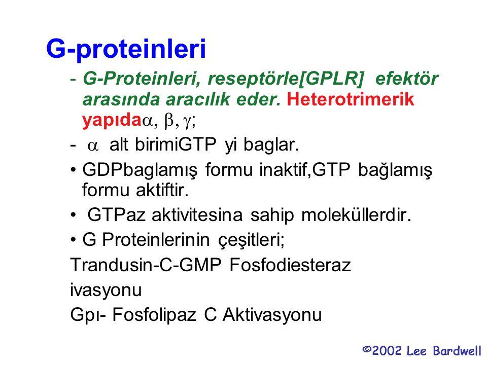G-proteinleri G-Proteinleri, reseptörle[GPLR] efektör arasında aracılık eder. Heterotrimerik yapıdaa, b, g;